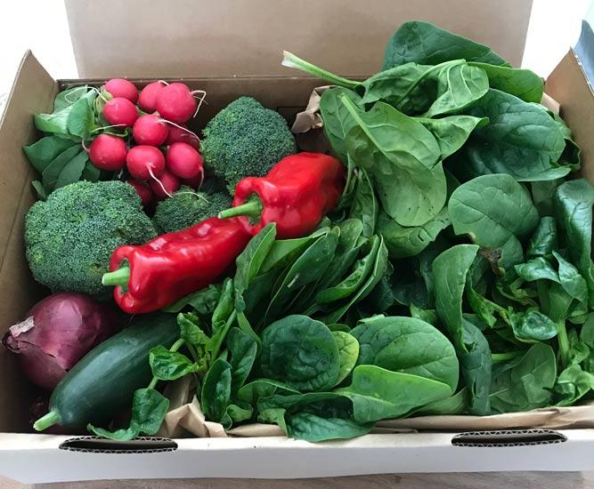 Biologisch groentepakket